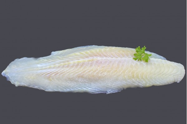 SUTCHI FISH FILLET